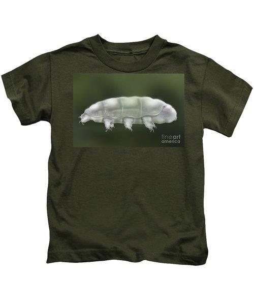 Water Bear Tardigrada - Waterbear Tardigrade  - Scientific Illustration Kids T-Shirt