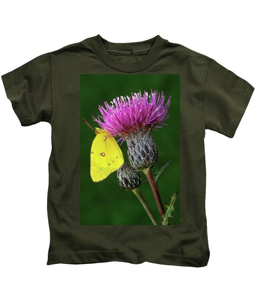 Yellow Sulfur Butterfly On Thistle Kids T-Shirt