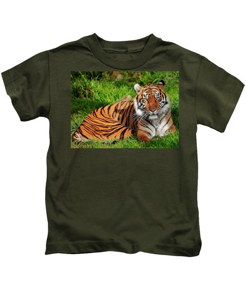 Sumatran Tiger  Kids T-Shirt