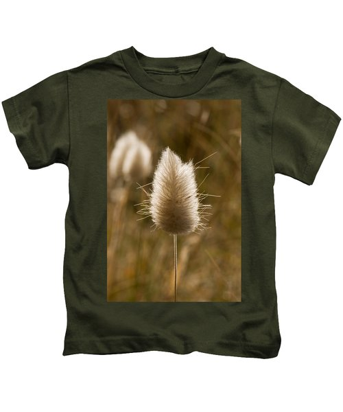 A Beautiful Seed Pod With Beautiful Sun Reflection Kids T-Shirt