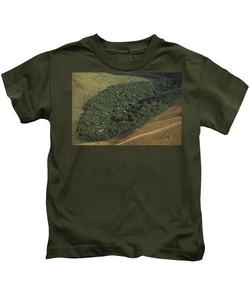 Atlantic Rainforest Remnant Brazil Kids T-Shirt