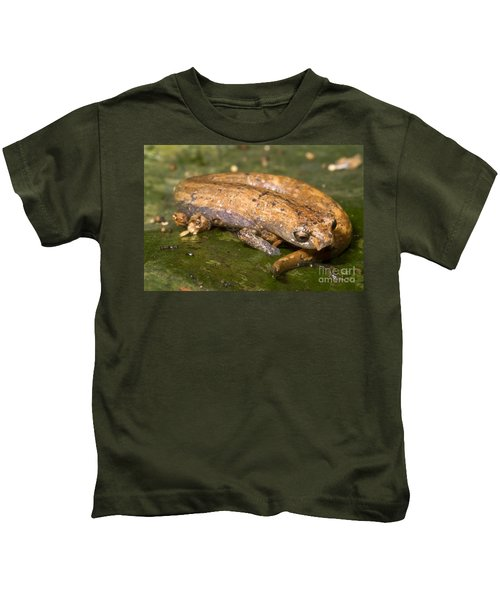 Bolitoglossine Salamander Kids T-Shirt