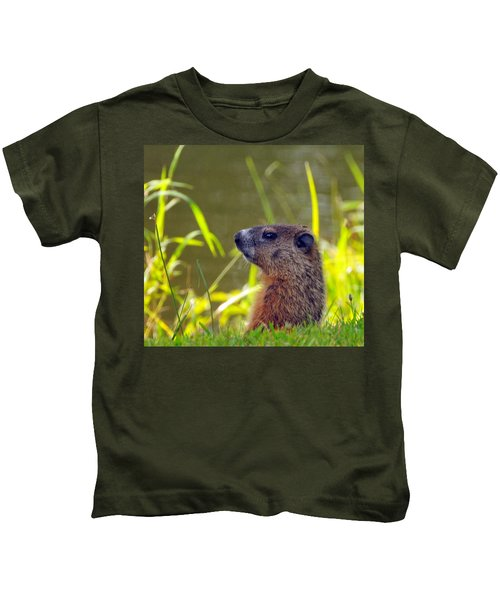 Chucky Woodchuck Kids T-Shirt by Paul Ward