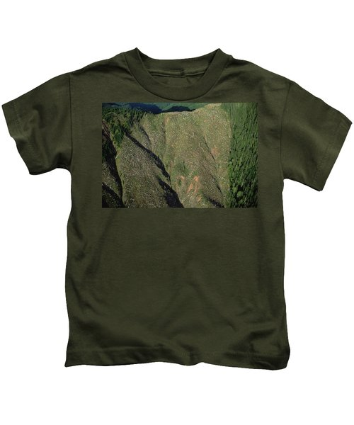 Clear Cutting, Olympic National Park Kids T-Shirt