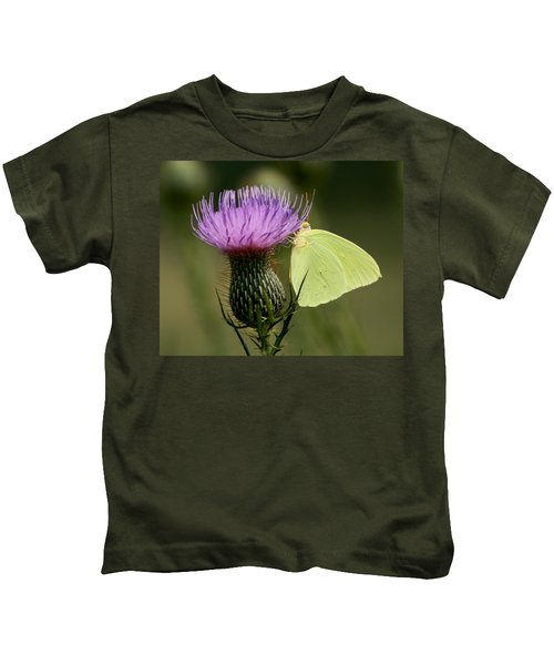 Cloudless Sulfur Butterfly On Bull Thistle Wildflower Kids T-Shirt