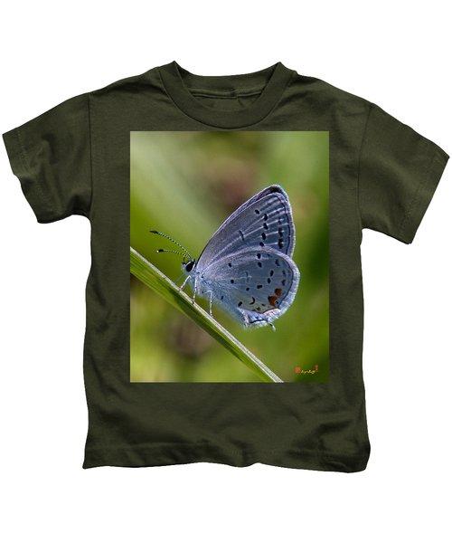 Eastern Tailed-blue Butterfly Din045 Kids T-Shirt