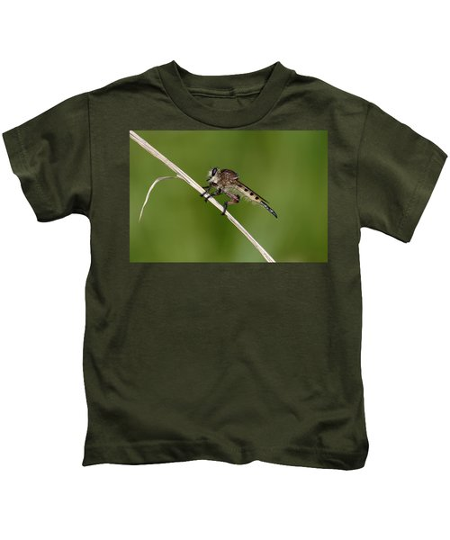 Giant Robber Fly - Promachus Hinei Kids T-Shirt