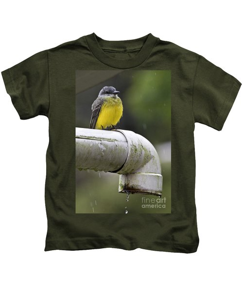 Grey-capped Flycatcher Kids T-Shirt by Heiko Koehrer-Wagner