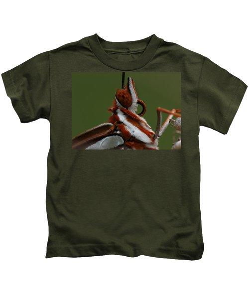 Gulf Fritillary Butterfly Portrait Kids T-Shirt