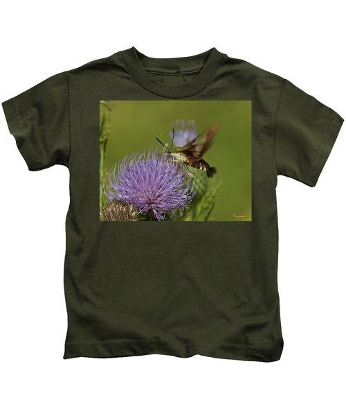 Hummingbird Or Clearwing Moth Din178 Kids T-Shirt