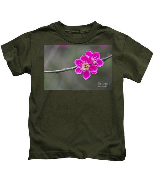 Japanese Flowering Apricot. Kids T-Shirt