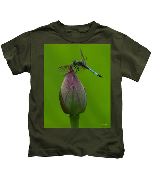 Lotus Bud And Blue Dasher Dragonfly Dl007 Kids T-Shirt