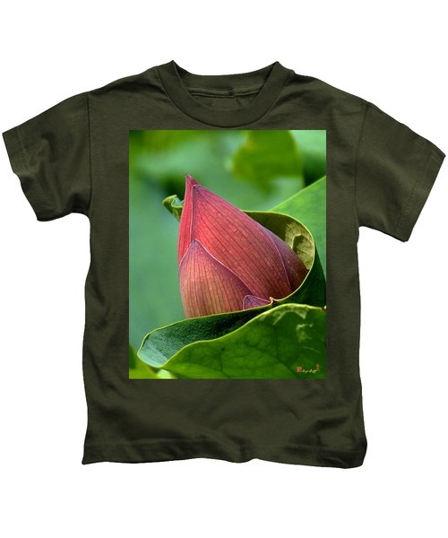 Lotus Bud--bud In A Blanket Dl049 Kids T-Shirt