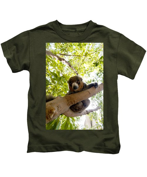 Mongoose Lemur Kids T-Shirt