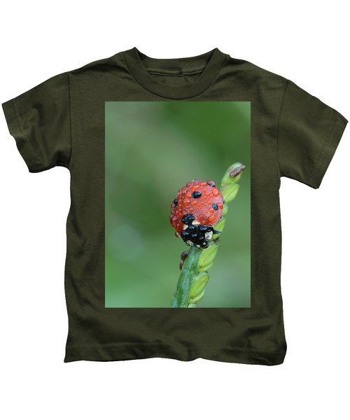 Seven-spotted Lady Beetle On Grass With Dew Kids T-Shirt