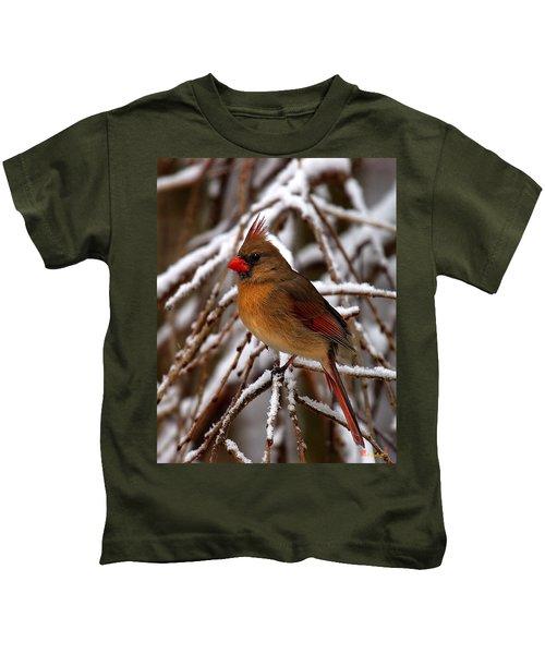 Snowbirds--cardinal Dsb025 Kids T-Shirt