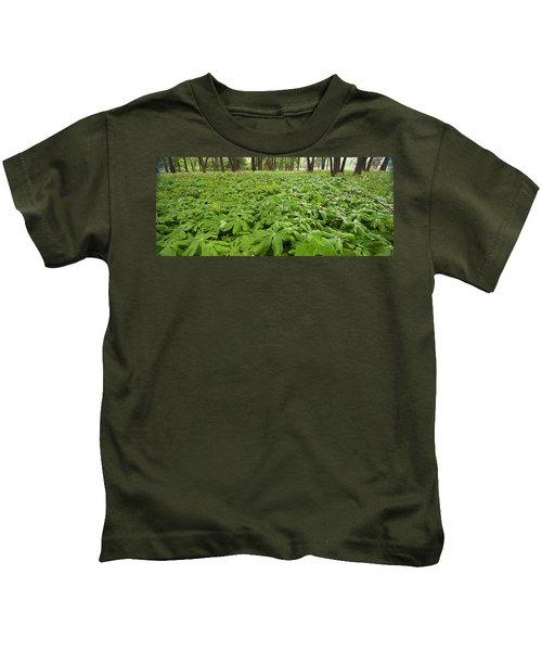 Springtime Mayapples Kids T-Shirt