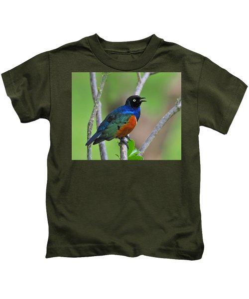 Superb Starling Kids T-Shirt by Tony Beck
