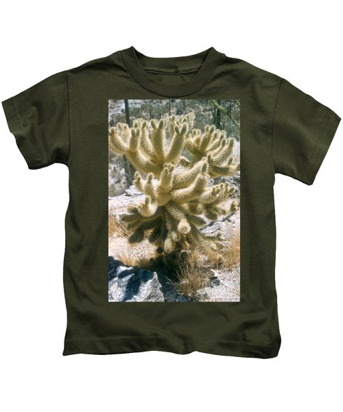 Teddy Bear Cholla Kids T-Shirt