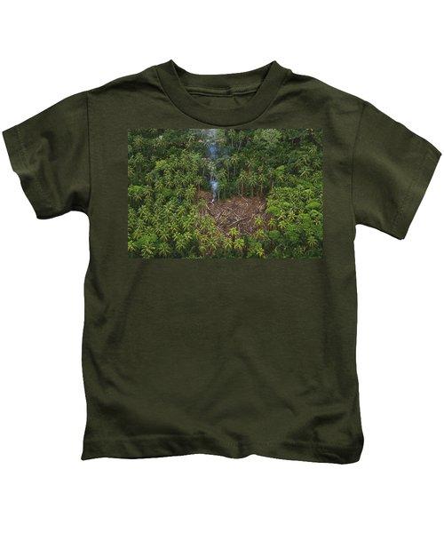 Traditional Slash And Burn Clearcut Kids T-Shirt