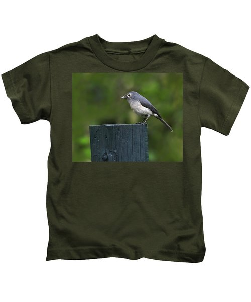White-eyed Slaty Flycatcher Kids T-Shirt by Tony Beck