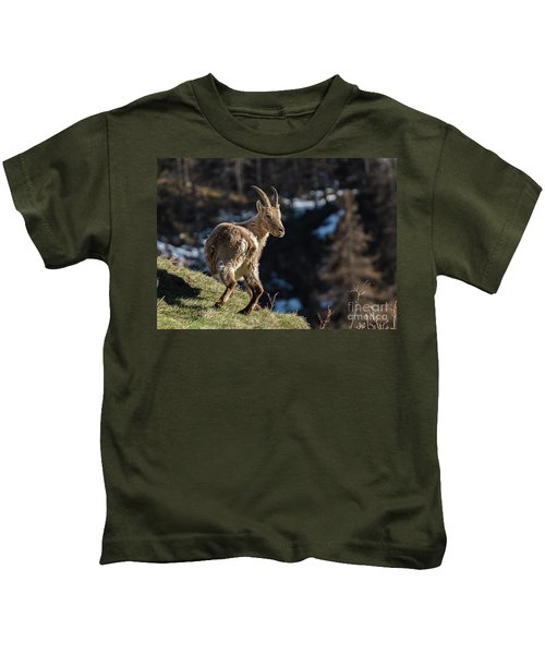 Ibex On The Mountains Kids T-Shirt
