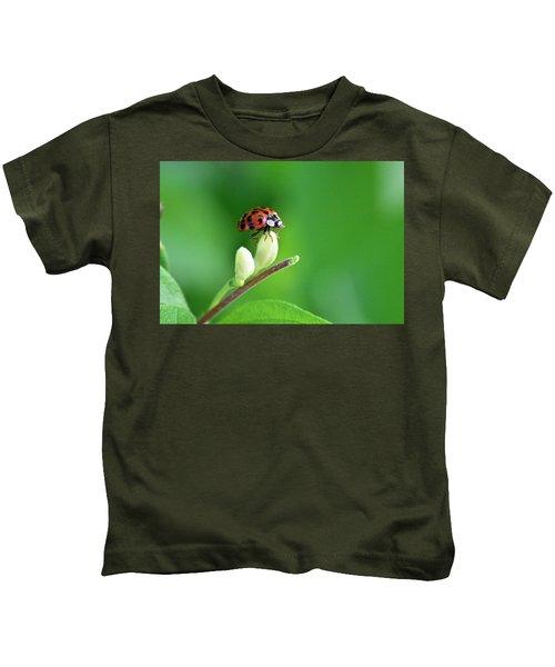 Lady Bug Kids T-Shirt
