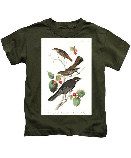 Little Tawny Thrush Kids T-Shirt