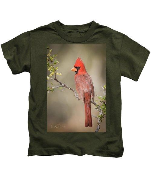 Northern Cardinal Cfh17765 Kids T-Shirt