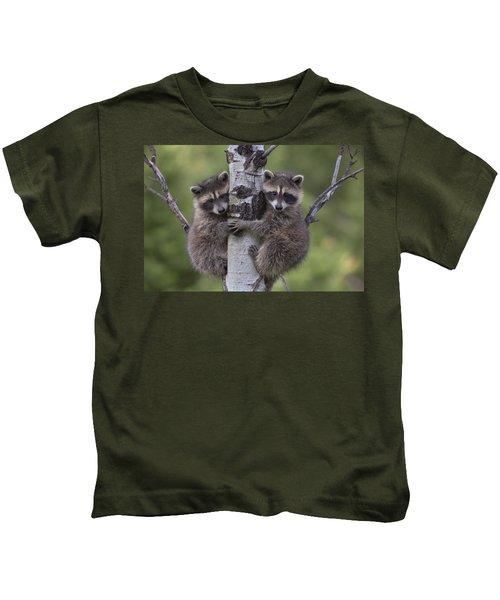 Raccoon Two Babies Climbing Tree North Kids T-Shirt