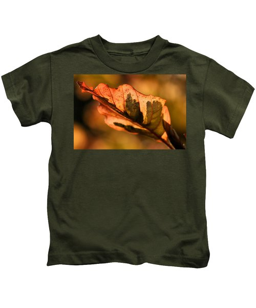 Tri-color Beech In Autumn Kids T-Shirt