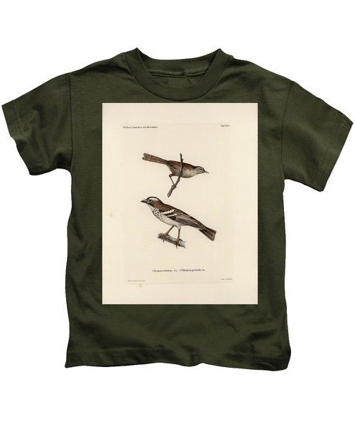 White-browed Sparrow-weaver And Grass Or Bush Warbler Kids T-Shirt