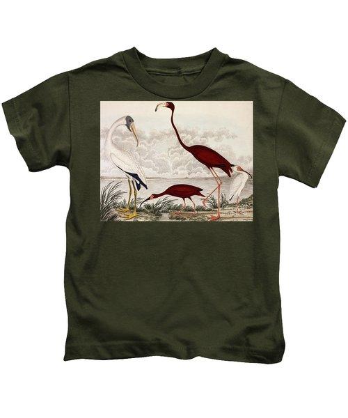 Wood Ibis, Scarlet Flamingo, White Ibis Kids T-Shirt by Alexander Wilson