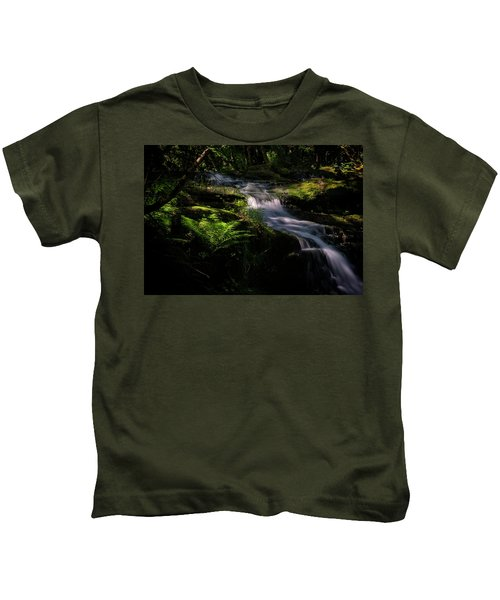 Lynn Mill Waterfalls Kids T-Shirt