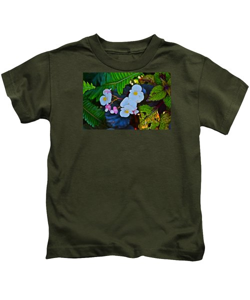 2015 Early September At The Garden Begonias Kids T-Shirt