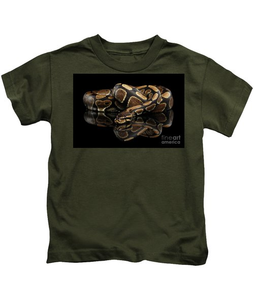 Ball Or Royal Python Snake On Isolated Black Background Kids T-Shirt