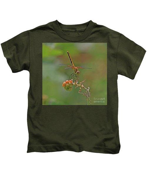 Band-winged Meadowhawk Kids T-Shirt