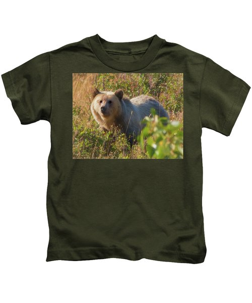 A  Female Grizzly Bear Looking Alertly At The Camera. Kids T-Shirt