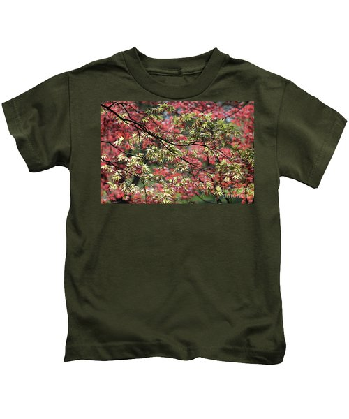 Acer Leaves In Spring Kids T-Shirt