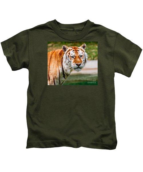 Aging Tiger Kids T-Shirt