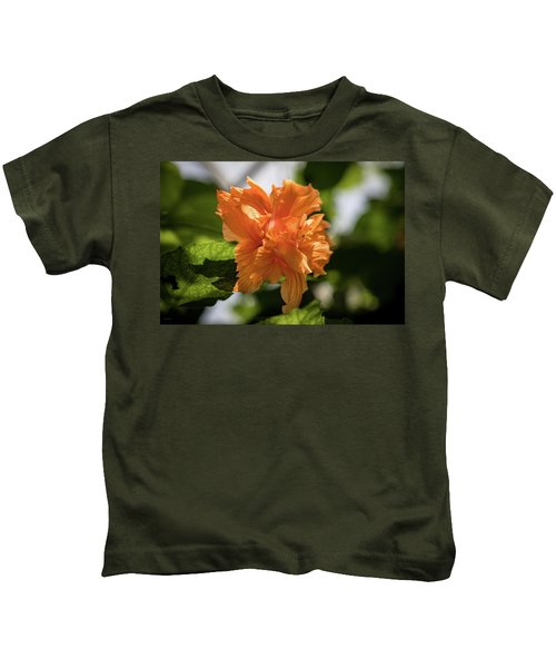 Allan Gardens Orange Kids T-Shirt