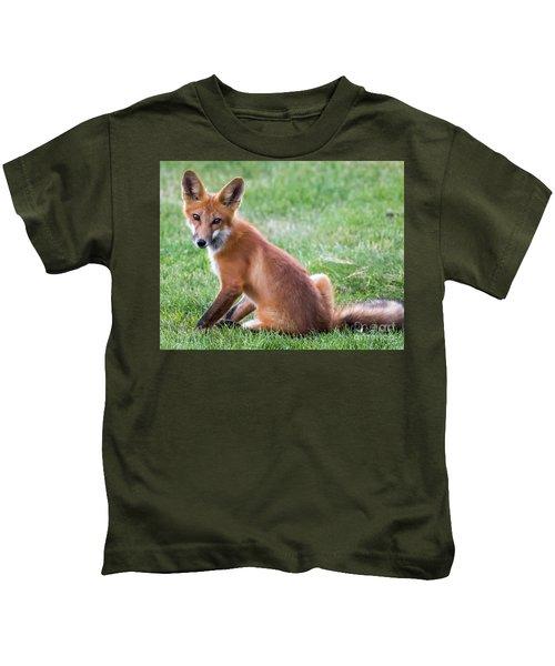 American Red Fox  Kids T-Shirt