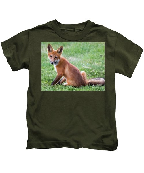 American Red Fox  Kids T-Shirt