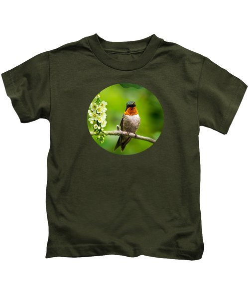 Male Ruby-throated Hummingbird With Showy Gorget Kids T-Shirt by Christina Rollo