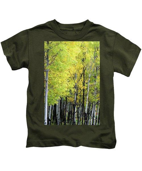 Aspen Splendor Kids T-Shirt