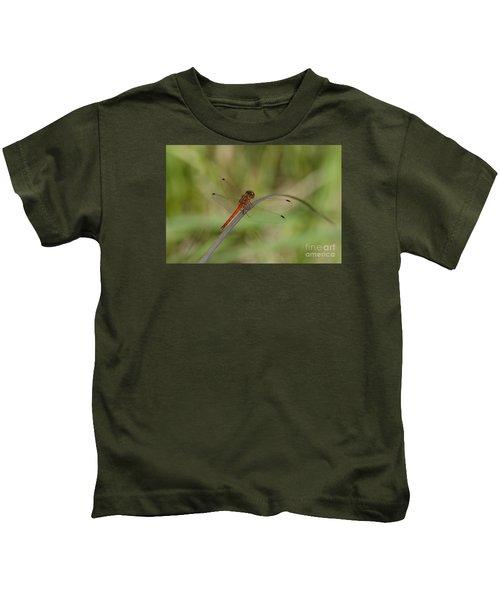 Autumn Meadowhawk Kids T-Shirt