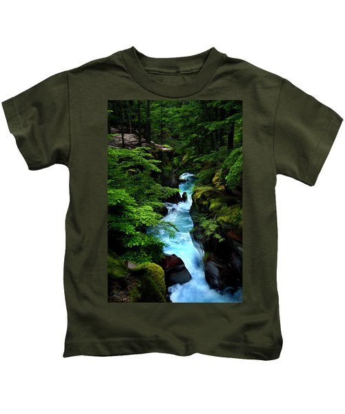 Avalanche Creek Waterfalls Kids T-Shirt