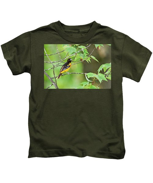 Baltimore Oriole Kids T-Shirt by Michael Peychich