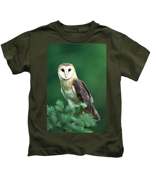 Barn Owl Tyto Alba Portrait, Hudson Kids T-Shirt