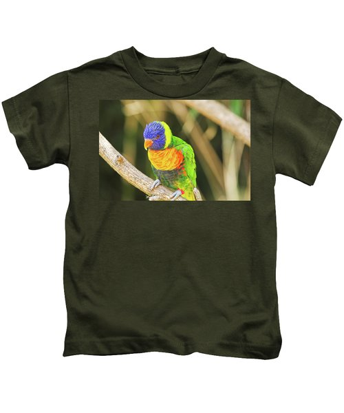 Beautiful Perched Mccaw On A Branch. Kids T-Shirt
